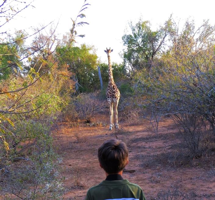 Enrico and Giraffe
